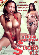 Thick Black & Stacked #12 Porn Video