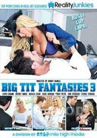 Big Tit Fantasies 3 Porn Video