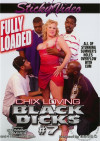 Chix Loving Black Dicks #7 Porn Movie