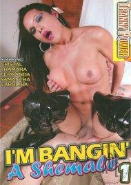 I'm Bangin' A Shemale (2010) SC Icon