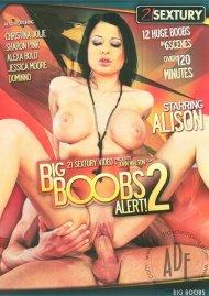 Big Boobs Alert! 2 Porn Movie