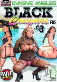 Black Cougars 3 Porn Movie