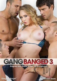 Gangbanged 3 Porn Movie